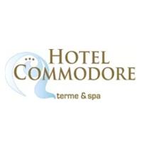Hotelcommodore_logoaquaemotion